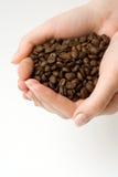 Feijão de café nas mãos humanas. Imagens de Stock