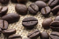 Feijão de café Roasted Foto de Stock