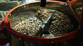 Feijão de café Roasted video estoque