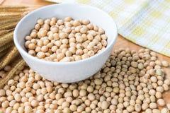 Feijão de soja na bacia branca Fotografia de Stock Royalty Free