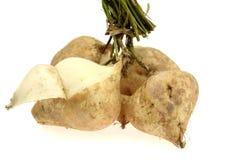 Feijão ou nabo de 'batata doce' Imagem de Stock Royalty Free