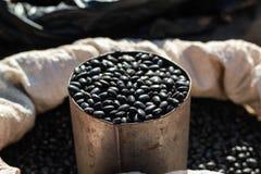 Feijão preto no copo inoxidável Imagens de Stock