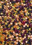 Feijão-roxo, lentilha, ervilhas e grão-de-bico Imagens de Stock Royalty Free