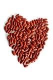 Feijão-roxo vermelho Imagem de Stock Royalty Free