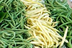 Feijão verde e amarelo Imagens de Stock Royalty Free