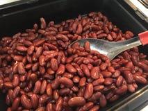 Feijão vermelho vermelho ou feijões vermelhos Fotografia de Stock Royalty Free