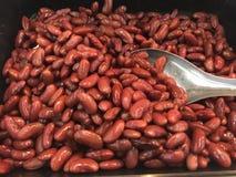 Feijão vermelho vermelho ou feijões vermelhos Imagem de Stock