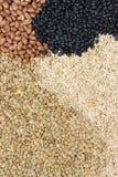 Feijões arroz e lentilhas como um teste padrão do fundo Imagens de Stock