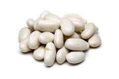 Feijões brancos Foto de Stock Royalty Free