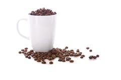 Feijões brancos do copo e de café Fotos de Stock Royalty Free