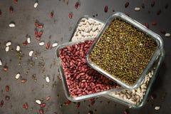 Feijões brancos, feijão de mung dos feijões vermelhos nas bacias de vidro em um fundo escuro imagem de stock royalty free