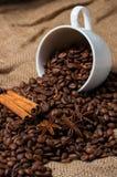 Feijões, canela e anis de café no copo de café Fotografia de Stock Royalty Free
