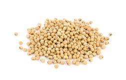 Feijões da soja isolados no fundo branco Imagem de Stock Royalty Free