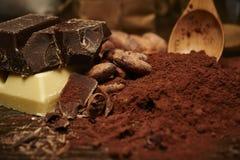 Feijões de cacau e pó, partes de chocolate escuro e branco foto de stock royalty free