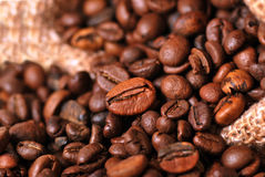 Feijões de café Imagem de Stock