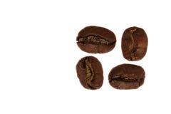 4 feijões de café Imagens de Stock