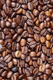 Feijões de café Imagens de Stock