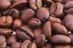 Feijões de café aromáticos Fotografia de Stock