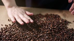 Feijões de café As mãos dispersaram feijões de café As mãos das mulheres tocam em feijões de café Qualidade da grão roasted na mo filme