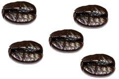 Feijões de café brilhantes Fotografia de Stock Royalty Free
