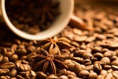 Feijões de café com anis de estrela no copo marrom Close-up fotos de stock royalty free