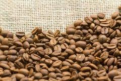 Feijões de café com espaço da cópia Fotos de Stock