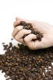Feijões de café de derramamento da mão Imagem de Stock