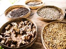 Feijões de café de Luwak Fotografia de Stock