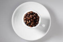 Feijões de café dentro com copo Fotografia de Stock Royalty Free