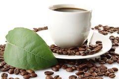 Feijões de café dispersados com xícaras de café e folha Imagens de Stock
