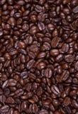 Feijões de café do café Imagem de Stock