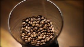 Feijões de café do gotejamento na máquina do moedor de café vídeos de arquivo