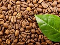 Feijões de café do saco com folha Imagem de Stock Royalty Free