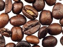 Feijões de café em um fundo branco Foto de Stock