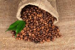 Feijões de café em um saco no fundo do pano de saco Fotografia de Stock