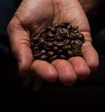 Feijões de café em uma mão Imagem de Stock
