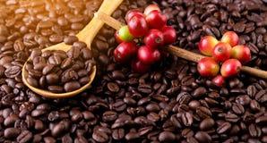 Feijões de café Em uma rotação de madeira do fundo imagens de stock