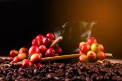 Feijões de café Em uma rotação de madeira do fundo fotos de stock