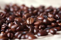 Feijões de café frescos imagem de stock royalty free