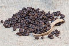 Feijões de café frescos com colher de madeira Foto de Stock Royalty Free