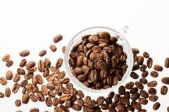 Feijões de café isolados Fotografia de Stock Royalty Free