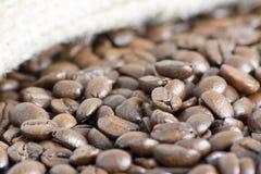 Feijões de café macro Fotografia de Stock