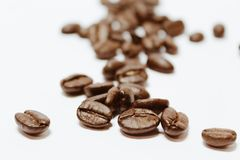 Feijões de café macro Foto de Stock Royalty Free