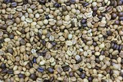 Feijões de café misturados Fotografia de Stock