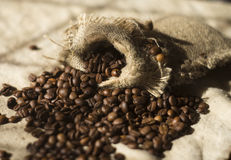 Feijões de café na lona na tabela Foto de Stock Royalty Free