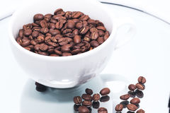 Feijões de café no copo branco Fotos de Stock