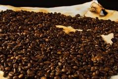 Feijões de café no papel velho Fotografia de Stock Royalty Free