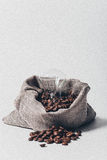 Feijões de café no saco Fotos de Stock Royalty Free