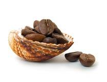 Feijões de café no seashell imagem de stock royalty free