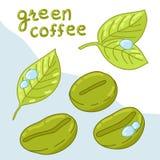 Feijões de café orgânicos ilustração do vetor